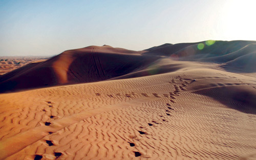 ضياع عامل في الصحراء