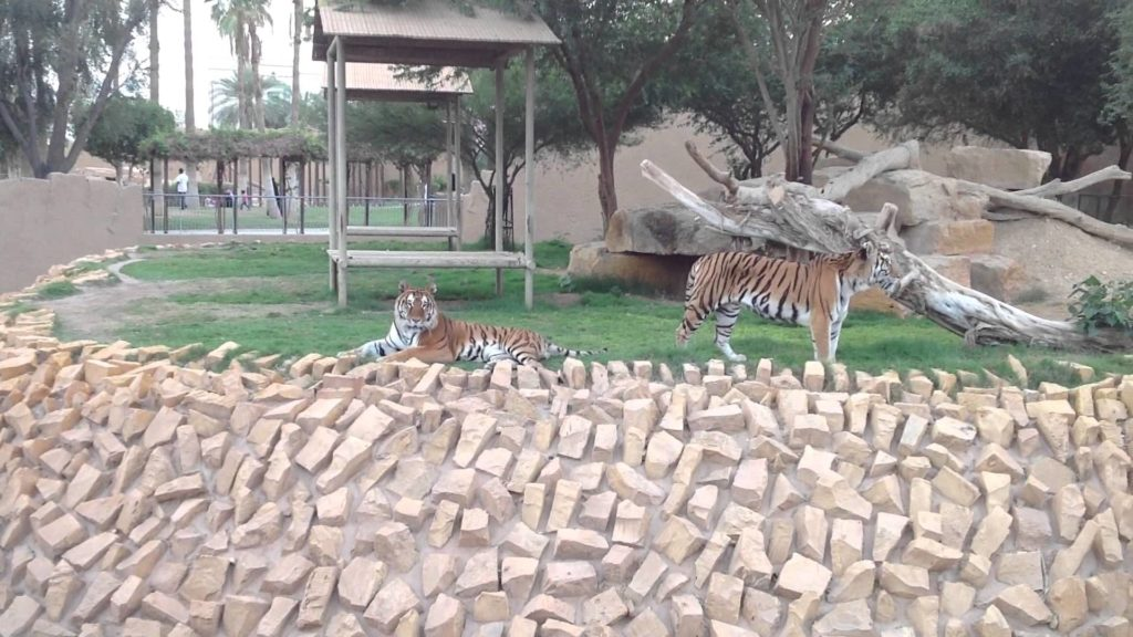 حديقة الحيوانات