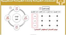 نموذج استشارة ادارية
