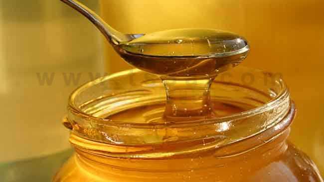 محلات بيع العسل الاصلي في الطائف