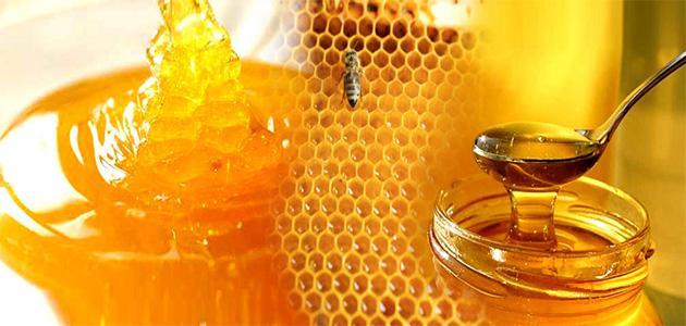 مواصفات عسل السدر الاصلي