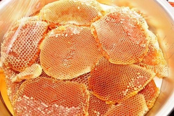 نحلة عسل مكة