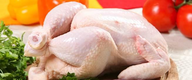 الدجاج من فوائده