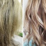 انواع تقصف الشعر