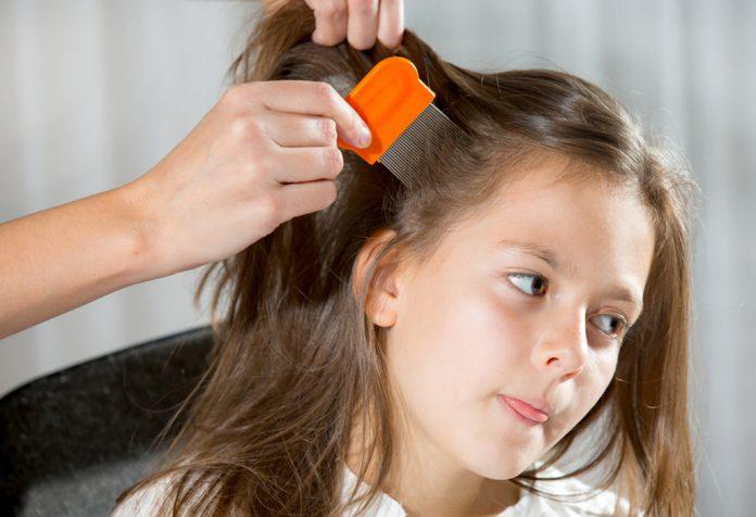 علاج تقصف الشعر المتقصف عند الأطفال