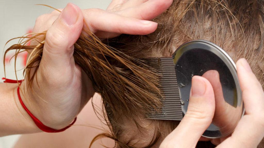 علاج لتقصف الشعر وتطويله