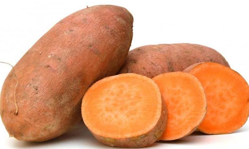 البطاطاالحلوة