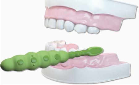 الخطوة الاولى تنظيف الاسنان للاطفال