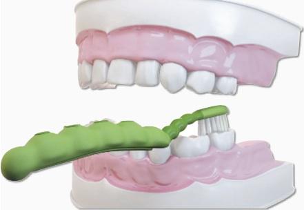 الخطوة 3 تنظيف الاسنان للاطفال