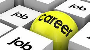 توفير الوظائف والخدمات على مستوى