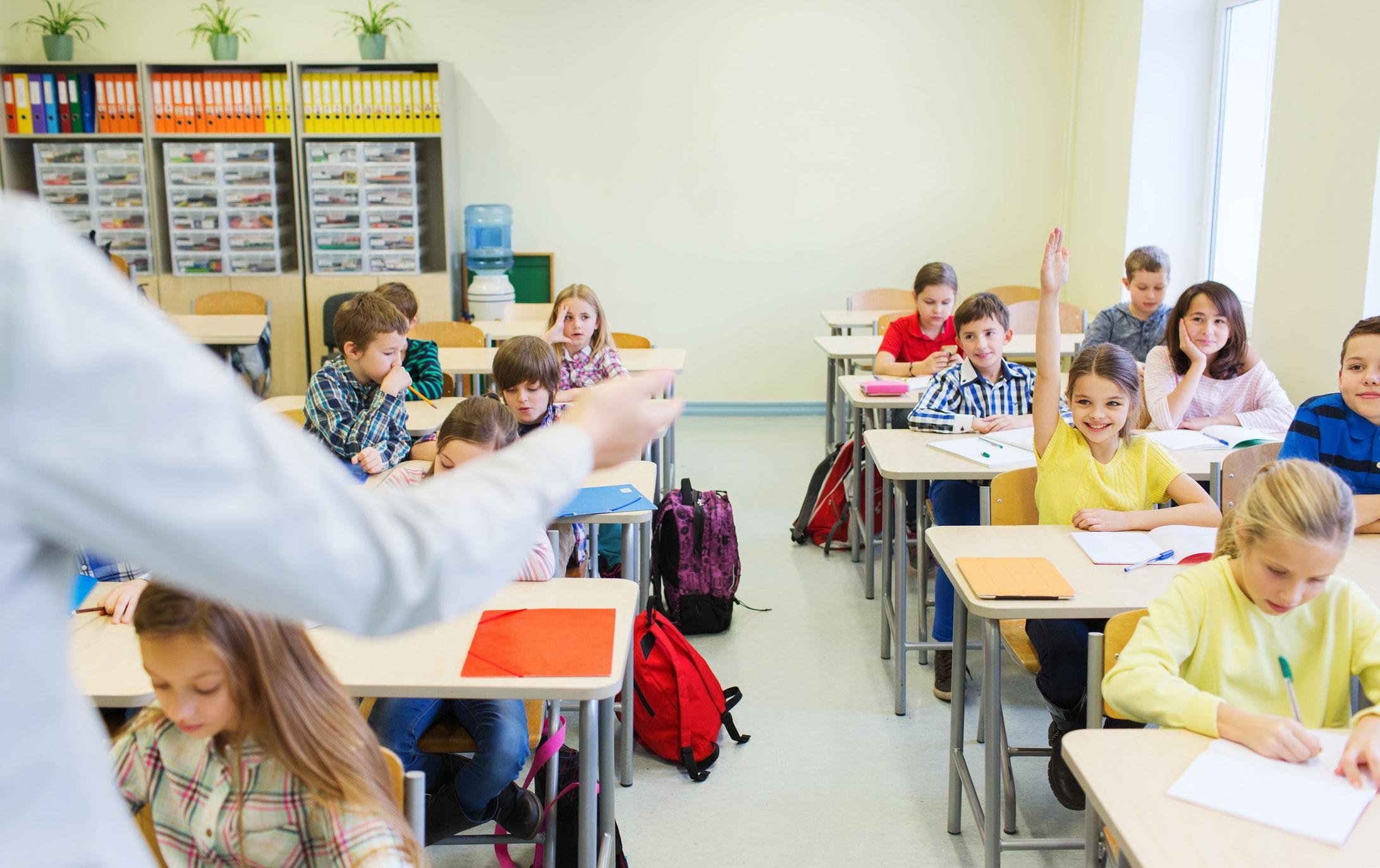 دراسة جدوى مدرسة أهلية