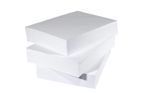 معدات مصنع الورق