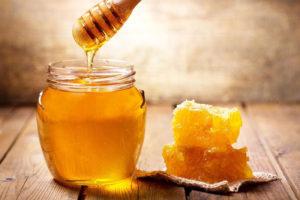 العسل للحامل الطبي
