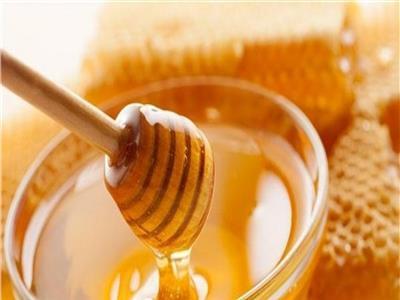 فوائد العسل في تقوية المناعة
