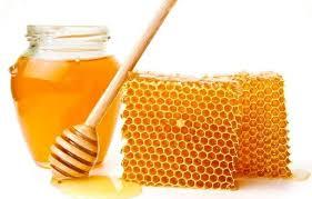 فوائد حبة البركة مع العسل للحمل